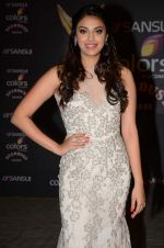 at the red carpet of Stardust awards on 21st Dec 2015 (435)_567954482a7d1.JPG