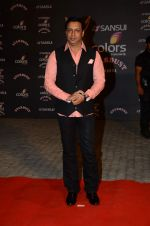 at the red carpet of Stardust awards on 21st Dec 2015 (462)_5679545334edb.JPG