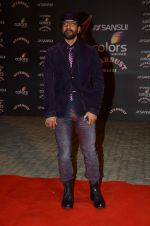 at the red carpet of Stardust awards on 21st Dec 2015 (526)_56795466a63c6.JPG