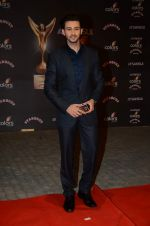 at the red carpet of Stardust awards on 21st Dec 2015 (541)_5679546e940ed.JPG