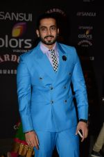 at the red carpet of Stardust awards on 21st Dec 2015
