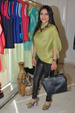 Aarti Surendranath at Ananya Pop-up in Mumbai on 22nd Dec 2015 (22)_567a5356c3182.JPG