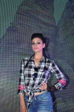 Barkha Bisht at Telly Calendar launch in Mumbai  on 22nd Dec 2015