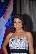 Debina Choudhary at Gurmeet Choudhary_s new film launch in Mumbai on 22nd Dec 2015 (98)_567a549dbc9f9.JPG