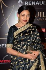 Deepti Naval at Producer_s Guild Awards on 22nd Dec 2015 (140)_567a75b41e3e3.JPG