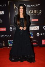 Kainaat Arora at Producer_s Guild Awards on 22nd Dec 2015 (163)_567a76a92333e.JPG