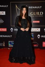 Kainaat Arora at Producer_s Guild Awards on 22nd Dec 2015 (166)_567a76ace3e36.JPG