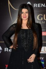 Kainaat Arora at Producer_s Guild Awards on 22nd Dec 2015 (167)_567a76ae620b9.JPG