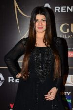 Kainaat Arora at Producer_s Guild Awards on 22nd Dec 2015 (157)_567a76a3e0e6f.JPG