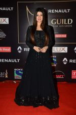 Kainaat Arora at Producer_s Guild Awards on 22nd Dec 2015 (164)_567a76aa567a7.JPG