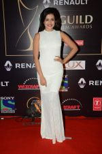 Mishti at Producer_s Guild Awards on 22nd Dec 2015 (279)_567a770e93545.JPG