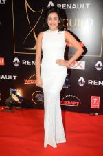 Mishti at Producer_s Guild Awards on 22nd Dec 2015 (290)_567a771a26308.JPG