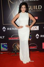 Mishti at Producer_s Guild Awards on 22nd Dec 2015 (284)_567a7713988e3.JPG