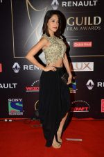 Nushrat Bharucha at Producer_s Guild Awards on 22nd Dec 2015 (212)_567a77211977a.JPG