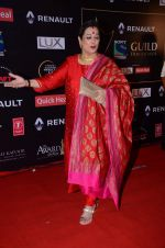 Poonam Sinha at Producer_s Guild Awards on 22nd Dec 2015 (343)_567a7733637b7.JPG
