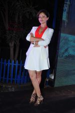 Rubina Dilaik at Telly Calendar launch in Mumbai  on 22nd Dec 2015
