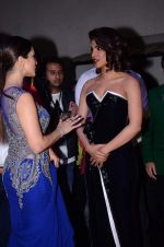 Sunny Leone, Priyanka Chopra at Producer_s Guild Awards on 22nd Dec 2015 (65)_567a78ffb7015.JPG