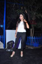 Tina Dutta at Telly Calendar launch in Mumbai  on 22nd Dec 2015