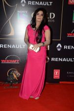 at Producer_s Guild Awards on 22nd Dec 2015 (134)_567a754173978.JPG