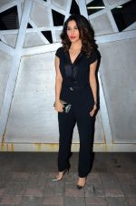Sophie Choudry at Jackky Bhagnani_s bday bash on 24th Dec 2015 (7)_567cfaaa2fcc0.JPG