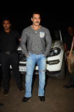 Salman KHan Birthday Bash on 27th Dec 2015 (13)_567fdebdac217.JPG
