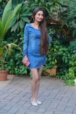 Sara Khan at an Event on 26th Dec 2015 (8)_567fdbbc61d21.JPG