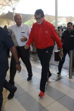 Amitabh bachchan snapped at airport on 10th Jan 2016