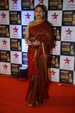 Deepti Naval at Star Screen Awards Red Carpet on 8th Jan 2016 (6)_56935dce34d85.JPG