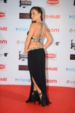 Elli Avram at Filmfare Nominations red carpet on 9th Jan 2016