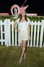 Evelyn Sharma at Zavaray Poonawala race on 9th Jan 2016
