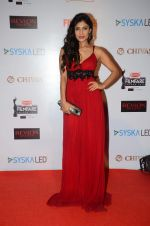 Ishita Sharma at Filmfare Nominations red carpet on 9th Jan 2016 (127)_5693971f3bc5c.JPG
