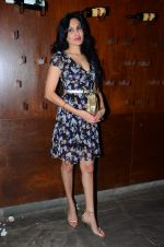 Kamya Punjabi at Ankahee Baatein TV bash on 9th Jan 2016 (76)_56939043c156c.JPG