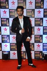 Manish Paul at Star Screen Awards Red Carpet on 8th Jan 2016
