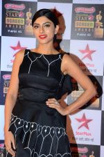 Sapna Pabbi at Star Screen Awards Red Carpet on 8th Jan 2016 (256)_56936009b0f53.JPG