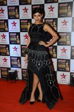 Sapna Pabbi at Star Screen Awards Red Carpet on 8th Jan 2016 (80)_569360085352c.JPG