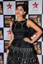 Sapna Pabbi at Star Screen Awards Red Carpet on 8th Jan 2016 (81)_56936009181f3.JPG