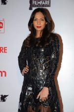 Shamita Singha at Filmfare Nominations red carpet on 9th Jan 2016 (125)_56939953cbbe0.JPG