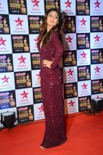 Shilpa Shetty at Star Screen Awards Red Carpet on 8th Jan 2016