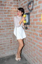 Simple Kaul at Mohit Mallik_s bday bash on 10th Jan 2016 (39)_5693bc7329c9d.JPG