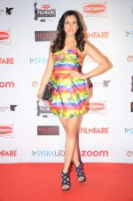 Sonnalli Seygall at Filmfare Nominations red carpet on 9th Jan 2016