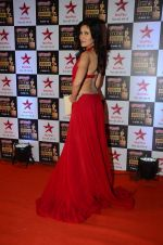 Sonnalli Seygall at Star Screen Awards Red Carpet on 8th Jan 2016