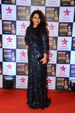 Tisca Chopra at Star Screen Awards Red Carpet on 8th Jan 2016 (252)_569360f7d0580.JPG