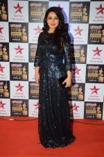 Tisca Chopra at Star Screen Awards Red Carpet on 8th Jan 2016 (77)_569360f481de5.JPG