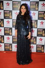 Tisca Chopra at Star Screen Awards Red Carpet on 8th Jan 2016 (79)_569360f5d029b.JPG