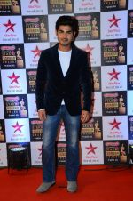 at Star Screen Awards Red Carpet on 8th Jan 2016 (197)_56935db4ace41.JPG