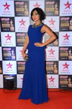at Star Screen Awards Red Carpet on 8th Jan 2016 (211)_56935dbe32216.JPG