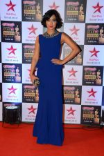 at Star Screen Awards Red Carpet on 8th Jan 2016 (212)_56935dbf37bb7.JPG