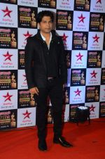 at Star Screen Awards Red Carpet on 8th Jan 2016 (277)_56935dcfb35f9.JPG
