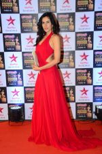 at Star Screen Awards Red Carpet on 8th Jan 2016 (314)_56935ddfab086.JPG
