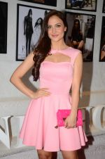 Elli Avram at Dabboo Ratnani calendar launch in Mumbai on 12th Jan 2016